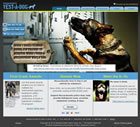Massachusetts Vest-A-Dog
